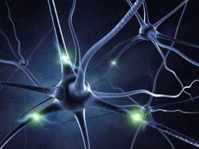 Neuromarketing u Valiconu